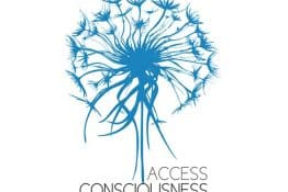 Access Bars Consciousness Semineri 2