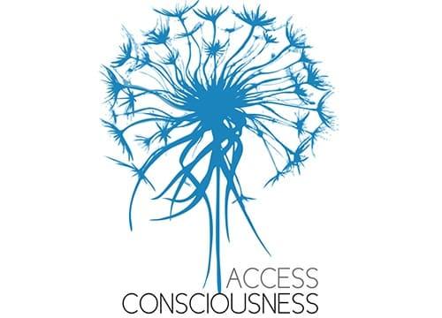 Access Bars Consciousness Semineri 1