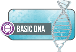 ThetaHealing Basic Dna Semineri 2