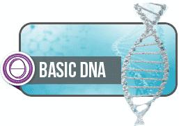 ThetaHealing Basic Dna Semineri 1