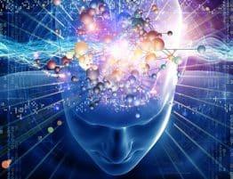 Beyin Frekansları 1